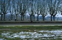 Bordeaux, février 2012